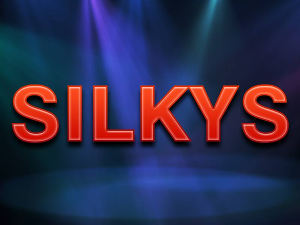 2017: Big thank you to staff and customers at Silkys bar for collecting £26.34 in their collection tins xx