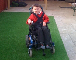 Charlie enjoying his astro turfed garden
